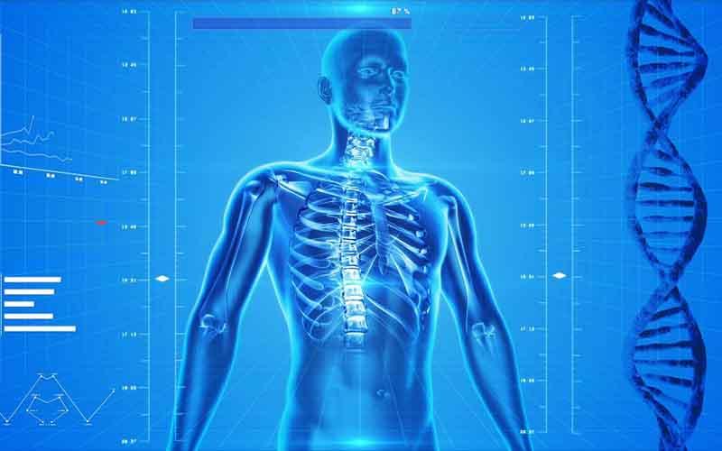 Top 4 Best Wearable Body Health Sensors